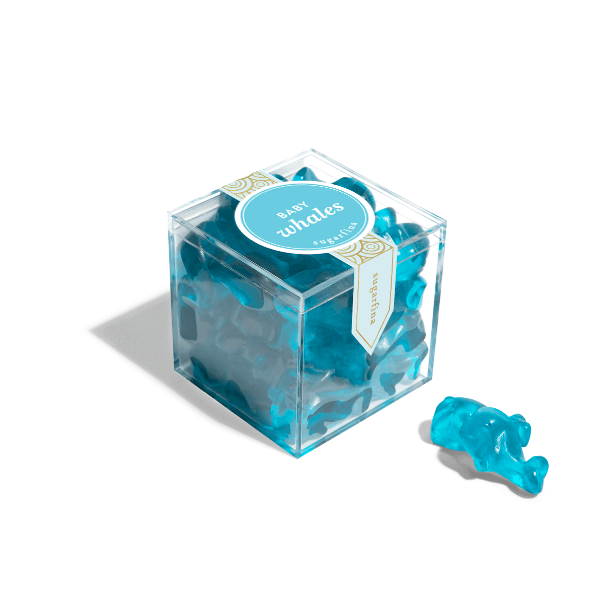Baby Whales - Small Candy Cube