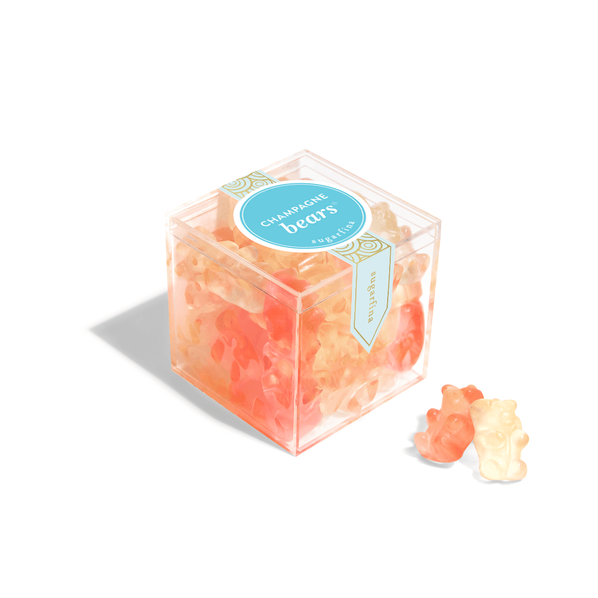 Champagne Bears - Small Candy Cube