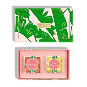 Taste of Paradise 2 Piece Candy Bento Box