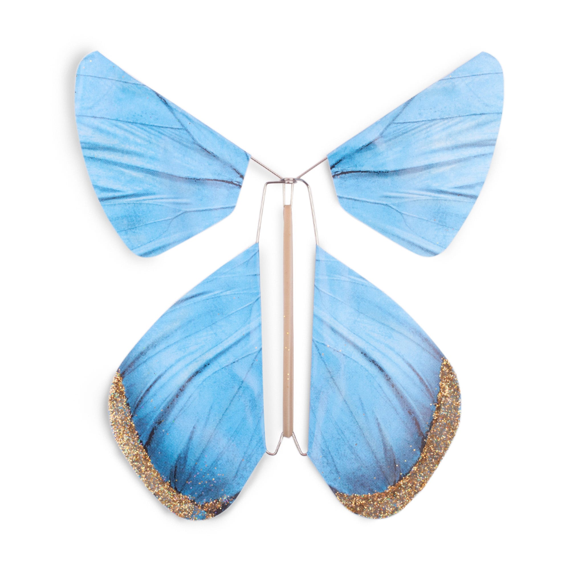 Blue Magic Butterfly